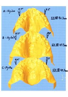 3Domoide005.jpg
